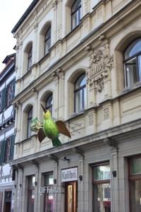 Ulm vogel