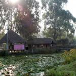 2 Lily Pond Atrs Centre-004t