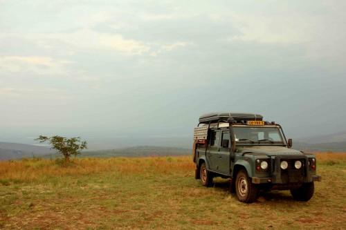 Akagera National Park-246t