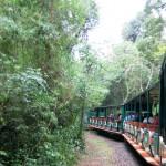 t Argentinie Iguazu-006
