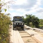 t Pantanal_131