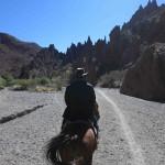 t6 Paard rijden Tupiza_044