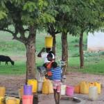 t1 Mozambique_035