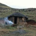 t1 Lesotho_113