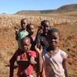 t2 Lesotho_060