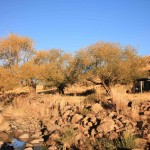 t6 Lesotho Oost_057